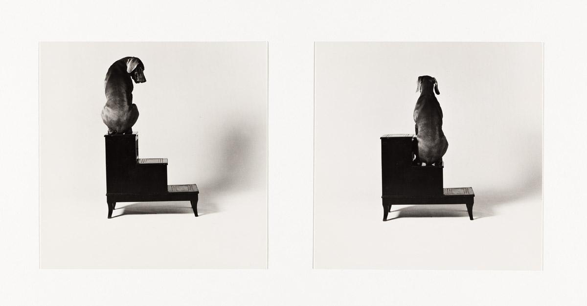 (RICHARD PRINCE, CINDY SHERMAN, ROBERT RAUSCHENBERG, ET ALIA) A portfolio entitled The Indomitable Spirit: Photographers + Friends Unit