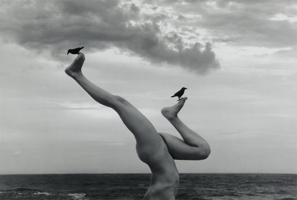 FLOR-GARDUÑO-(1957--)-Árbol-de-cuervos-[Tree-of-the-ravens]-