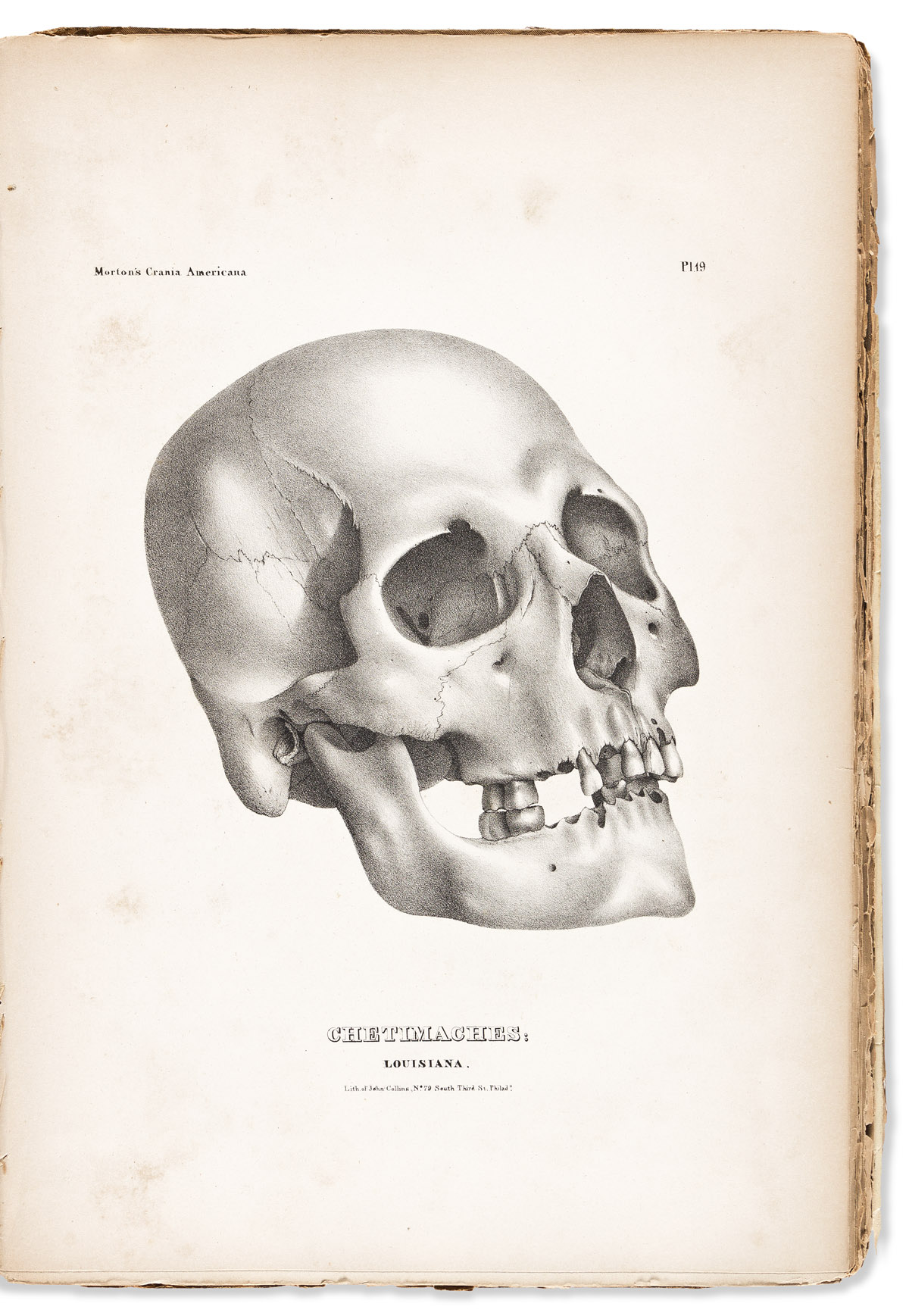 (AMERICAN INDIANS.) Samuel George Morton. Crania Americana; or, A Comparative View of the Skulls of Various Aboriginal Nations