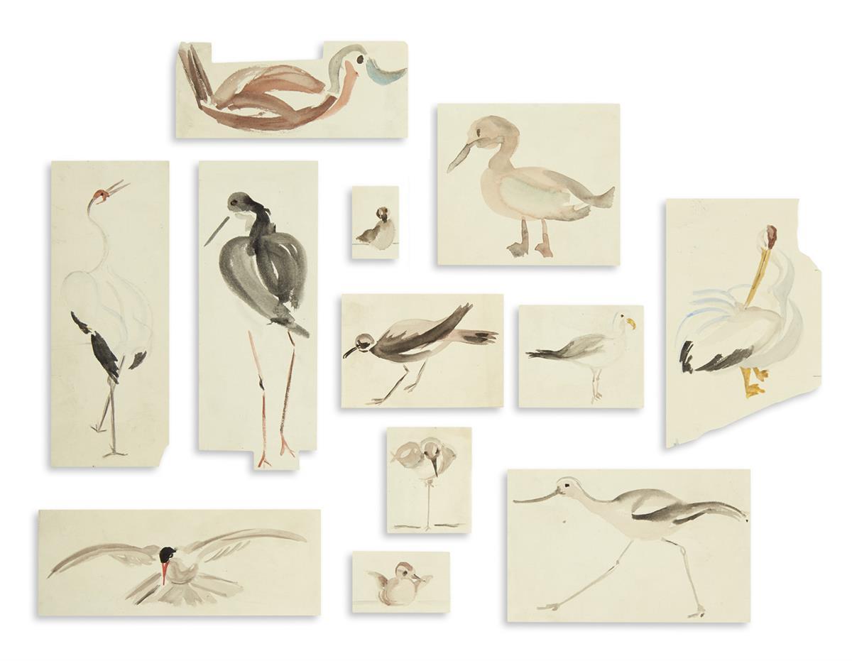 (BIRDS)-Group-of-approximately-12-stylized-ornithological-wa
