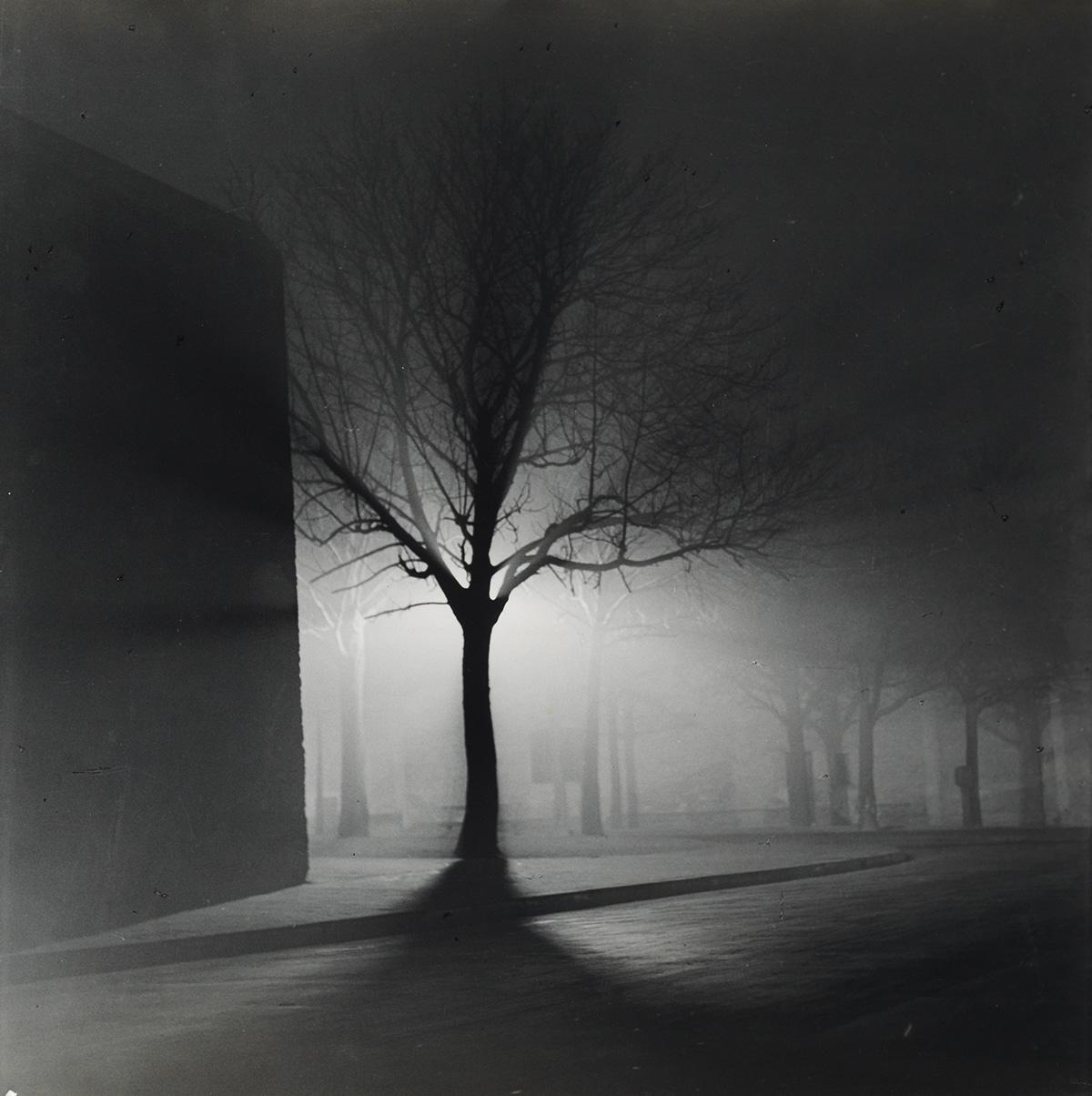 BRASSAÏ (1899-1984) Avenue de lObservatoire.