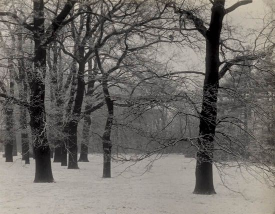 SUDEK-JOSEF-(1896-1976)-Prague-Royal-Gardens-in-Winter