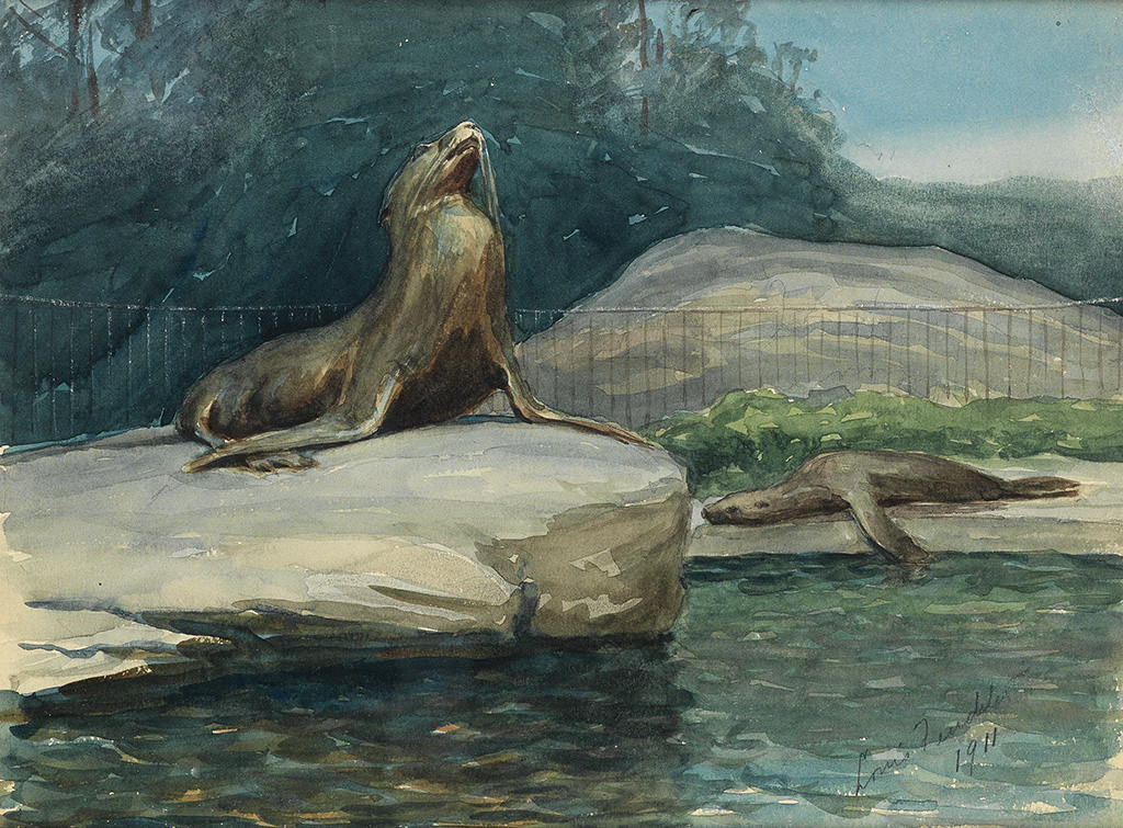 LOUIS-J-FEUCHTER-Seals-at-the-Central-Park-Zoo-New-York