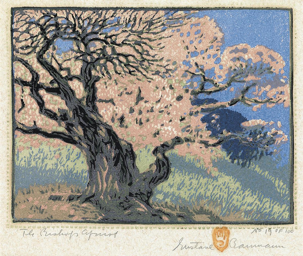 GUSTAVE-BAUMANN-The-Bishops-Apricot
