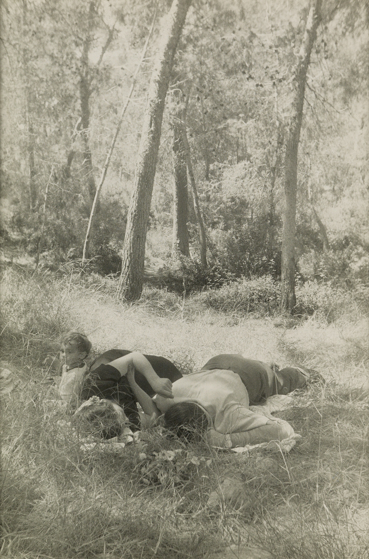 ROBERT-FRANK-(1924--)-Idyll-in-the-Woods-Spain