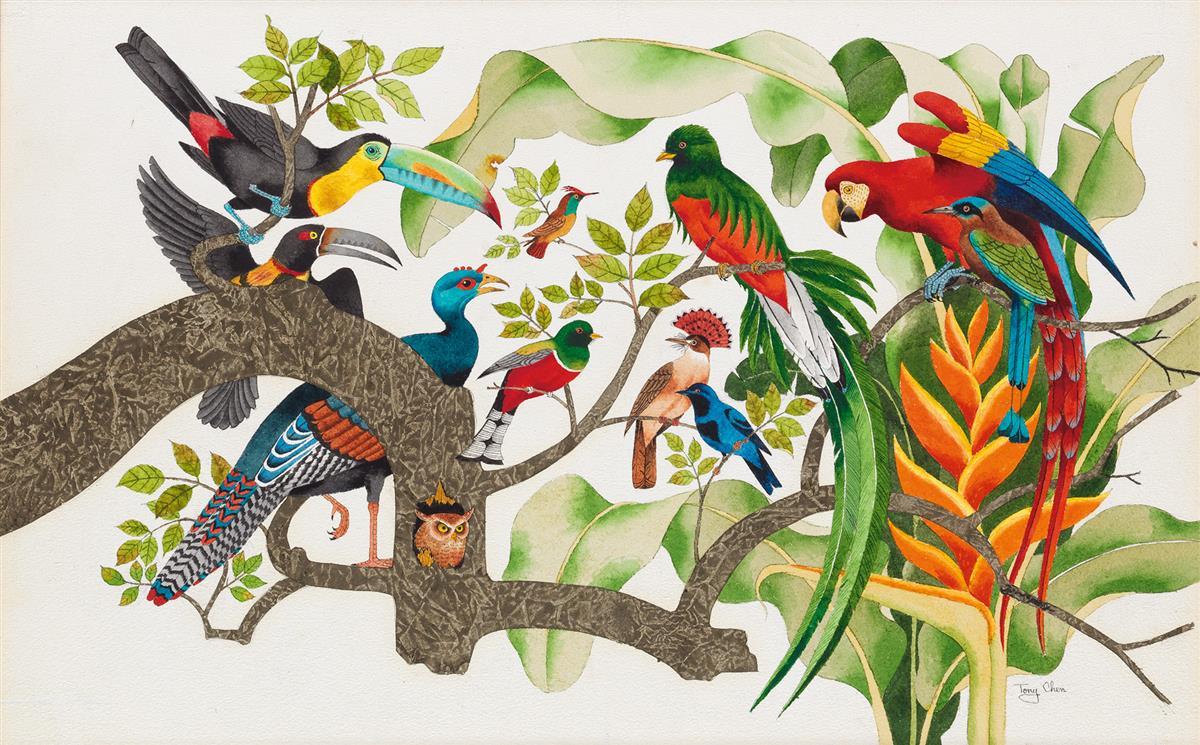 CHILDRENS-TONY-CHEN-Mexican-Birds