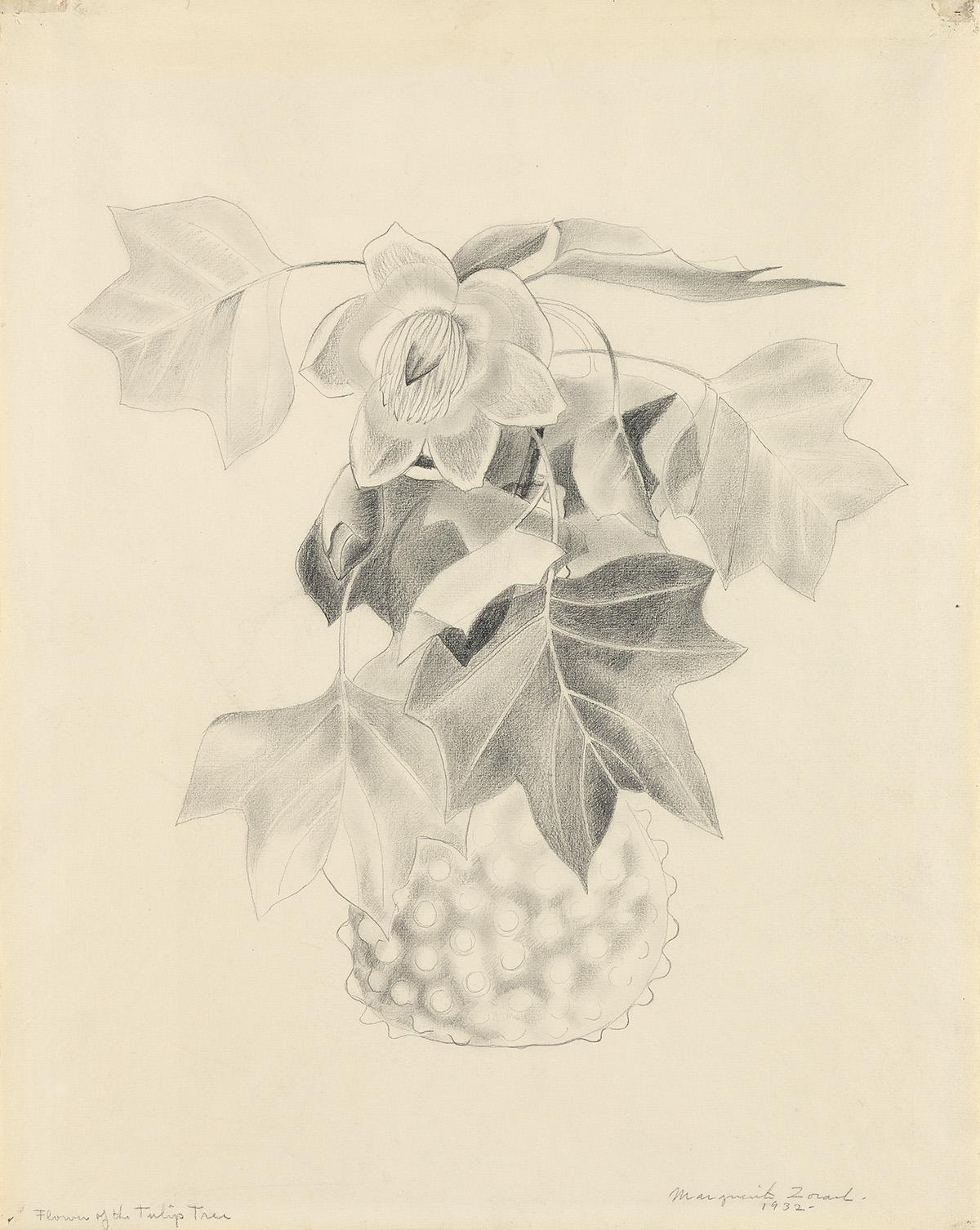 MARGUERITE-ZORACH-Flowers-of-the-Tulip-Tree