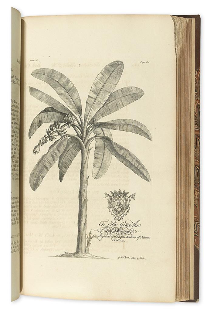 (BARBADOS.) Hughes, Griffith. The Natural History of Barbados.
