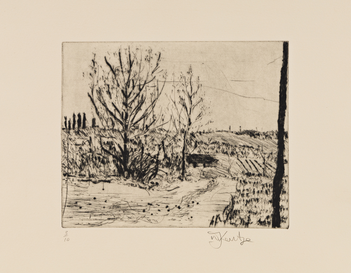 WILLIAM KENTRIDGE Landscape.