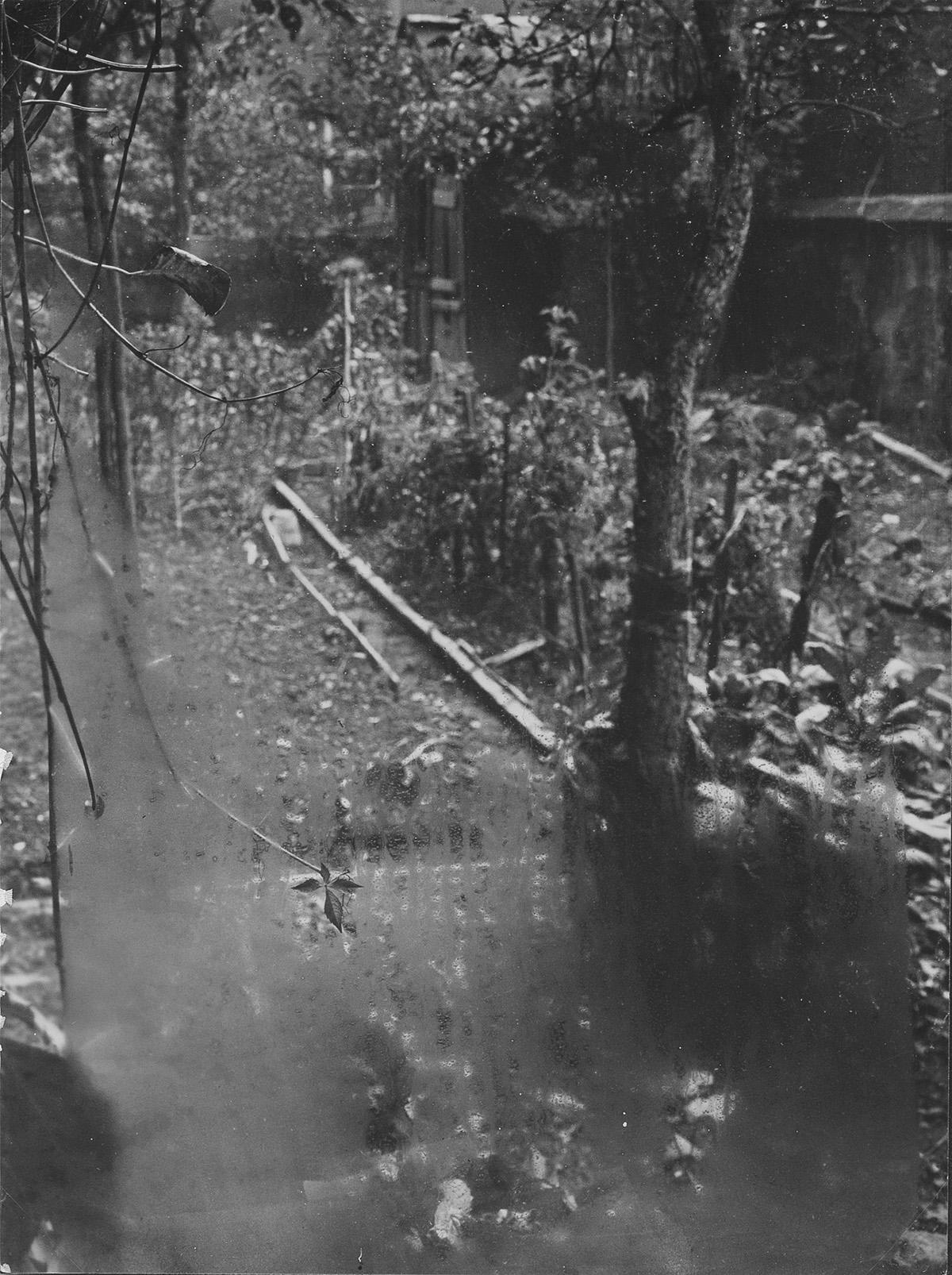 JOSEF-SUDEK-(1896-1976)-From-My-Window-(landscape)