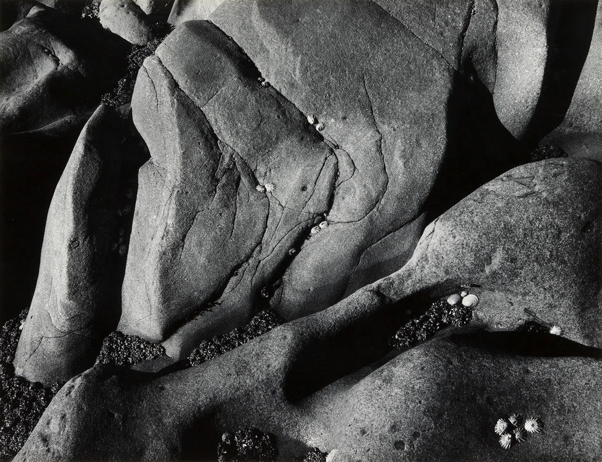 ANSEL-ADAMS-(1902-1984)-Rocks-and-Limpets-Point-Lobos-Califo
