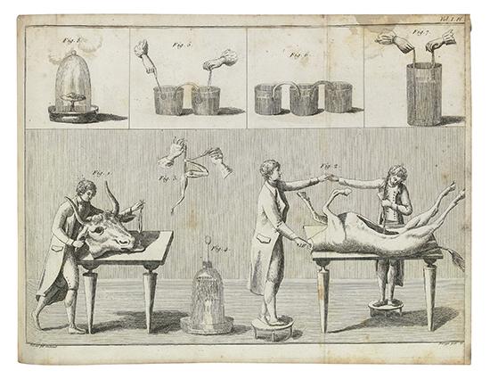 ALDINI, GIOVANNI. Essai Théorique et Expérimental sur le Galvanisme.  2 vols. in one.  1804