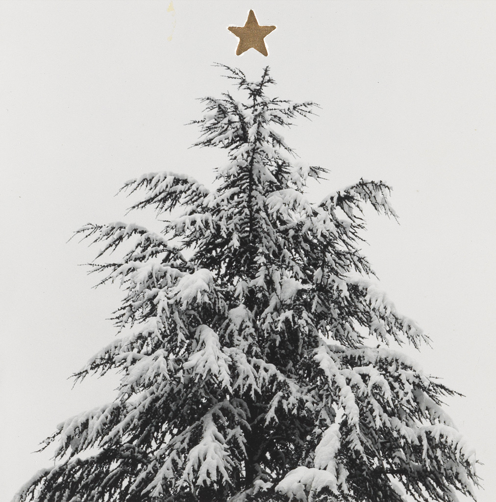 ROBERT MAPPLETHORPE (1946-1989) Christmas tree, with a die-cut gold star.