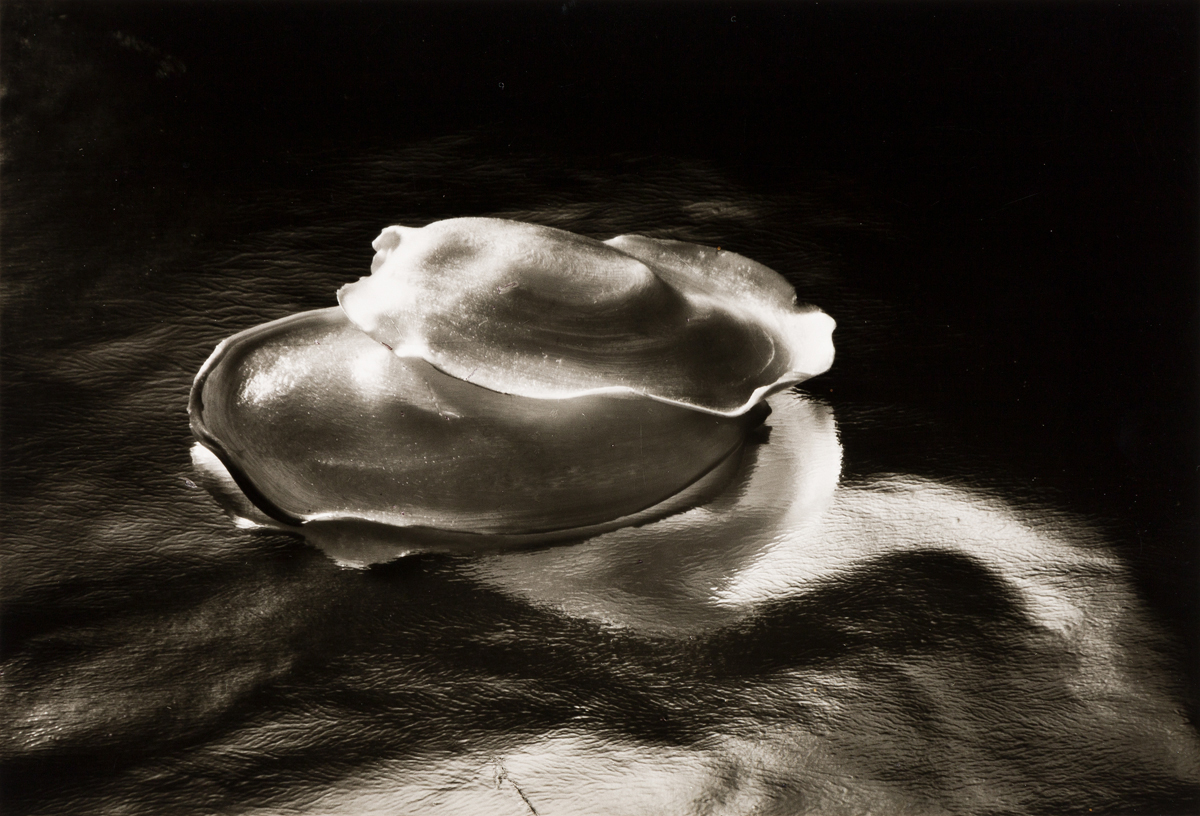 RUTH-BERNHARD-(1905-2006)-The-Gift-of-the-Commonplace-a-port