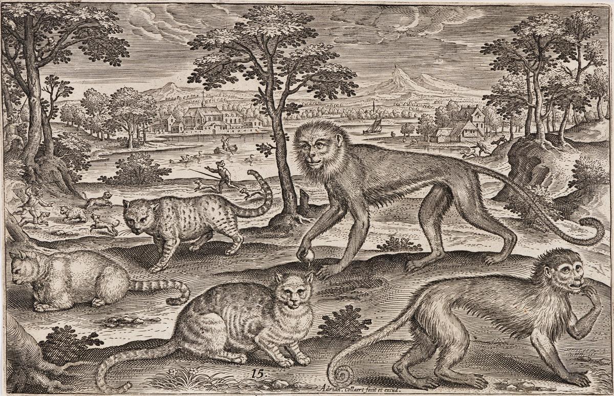 ADRIAEN COLLAERT Two engravings of animals.