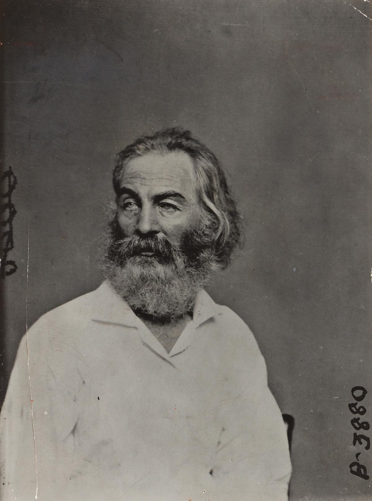 MATHEW BRADY (1822-1896) Portrait of Walt Whitman.