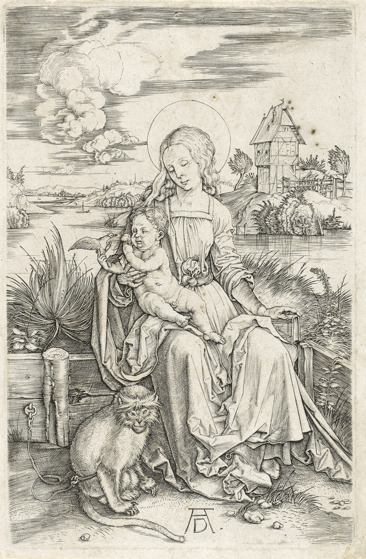 ALBRECHT DÜRER The Virgin and Child with the Monkey.