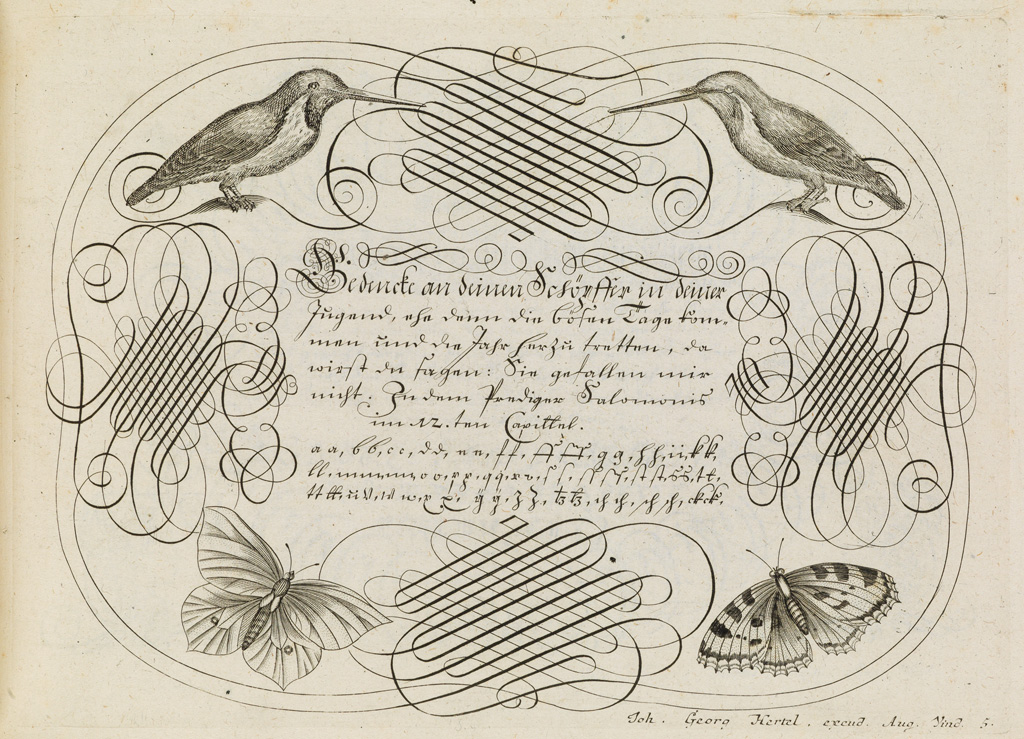 (BOOK-ARTS--TYPE--CALLIGRAPHY)-Losenauer-Johann-Jacob-Vorhri