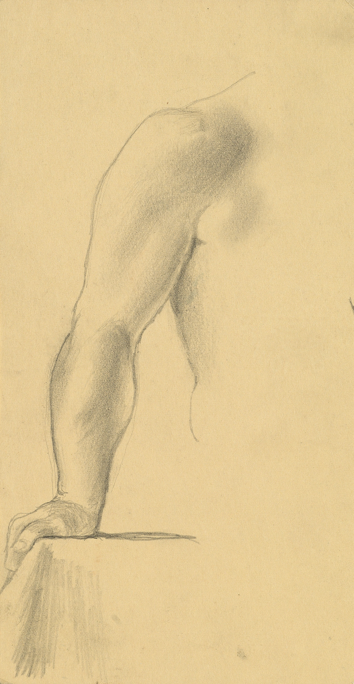 JARED-FRENCH-Group-of-5-anatomical-and-figural-studies