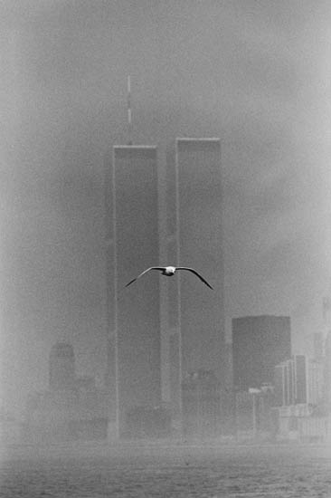 STETTNER-LOUIS-(1922--)-Manhattan-(Twin-Towers-and-seagull)