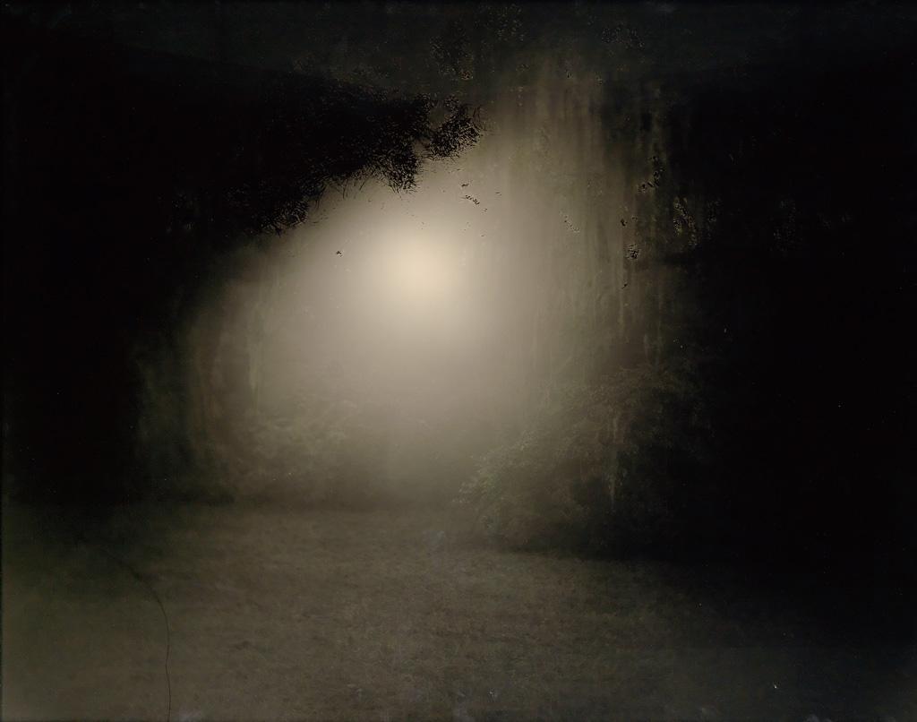 SALLY MANN (1951- ) Untitled (Deep South #7: Dark Glow).