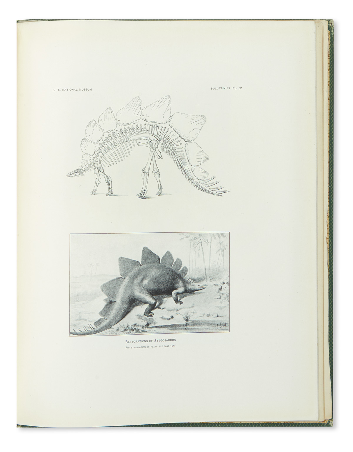 (FOSSILS)-Gilmore-Charles-Whitney-Osteology-of-the-Armored-D