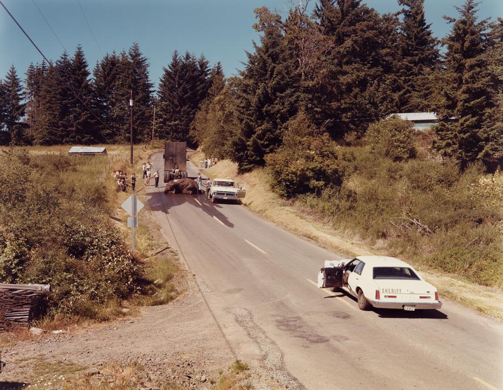 (JOEL STERNFELD; HENRY WESSEL JR.; NATHAN LYONS, et alia) A portfolio entitled American Roads.