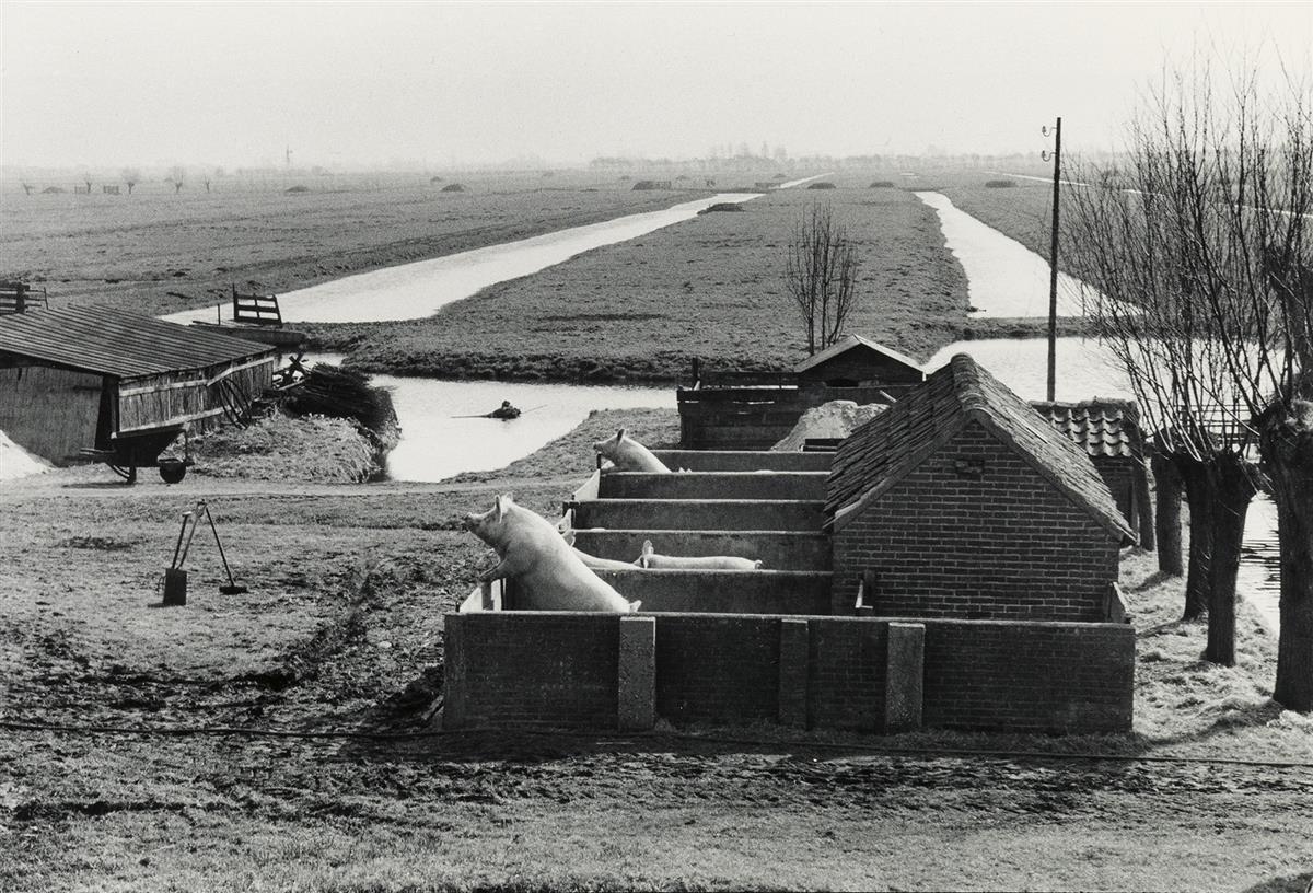 HENRI-CARTIER-BRESSON-(1908-2004)-Netherlands-near-Gouda