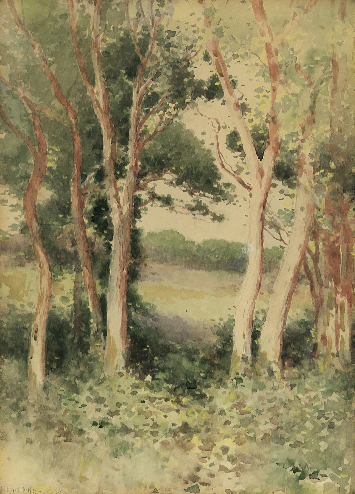 EDWARD-PERCY-MORAN-Forest-Clearing