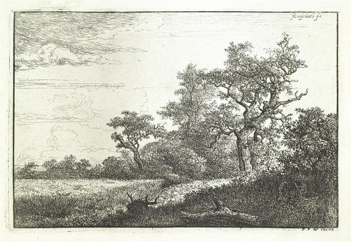 JACOB-VAN-RUISDAEL-The-Grain-Field-at-the-Edge-of-a-Wood