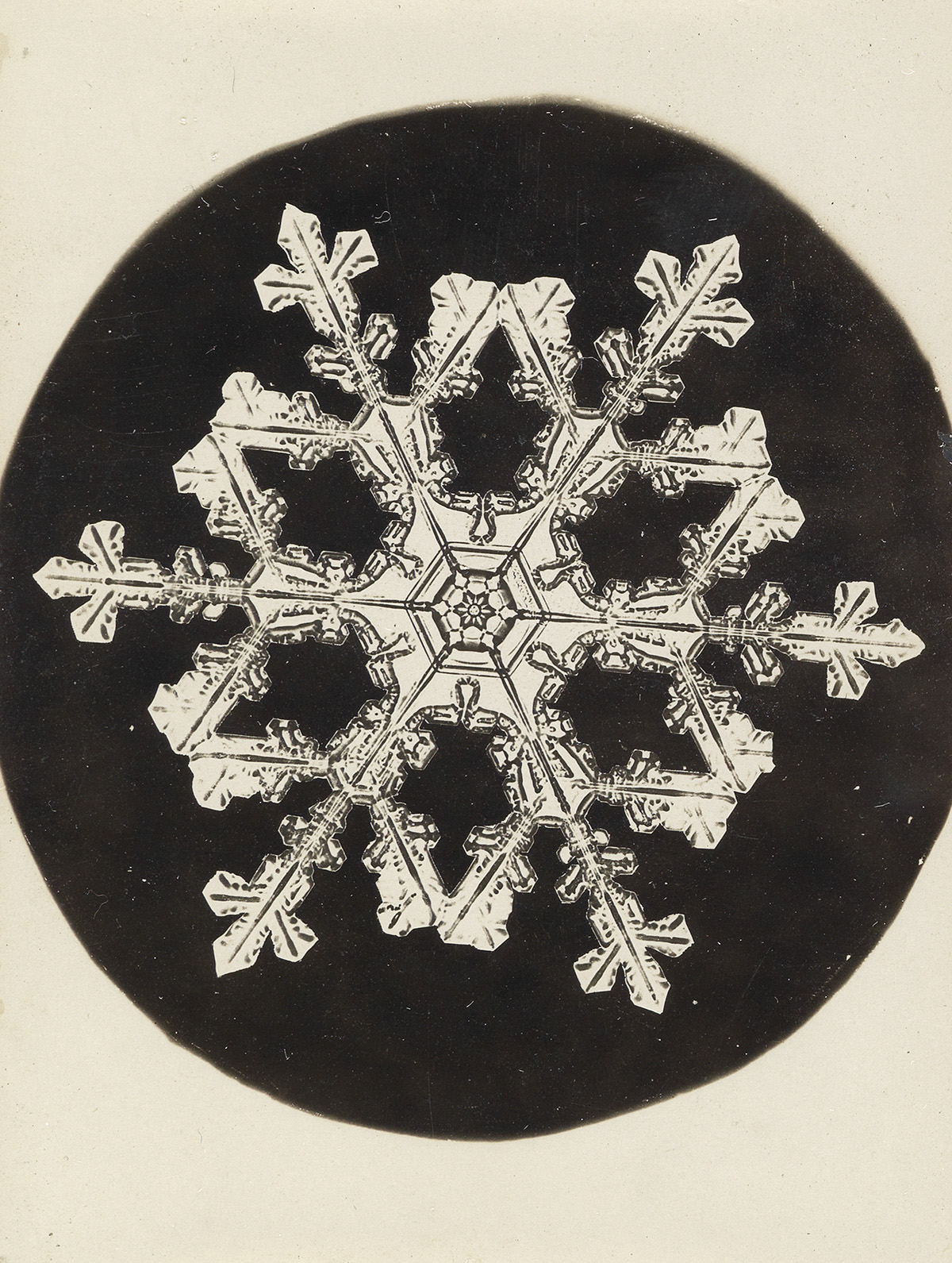 WILSON-A-SNOWFLAKE-BENTLEY-(1865-1931)-Group-of-3-microphoto