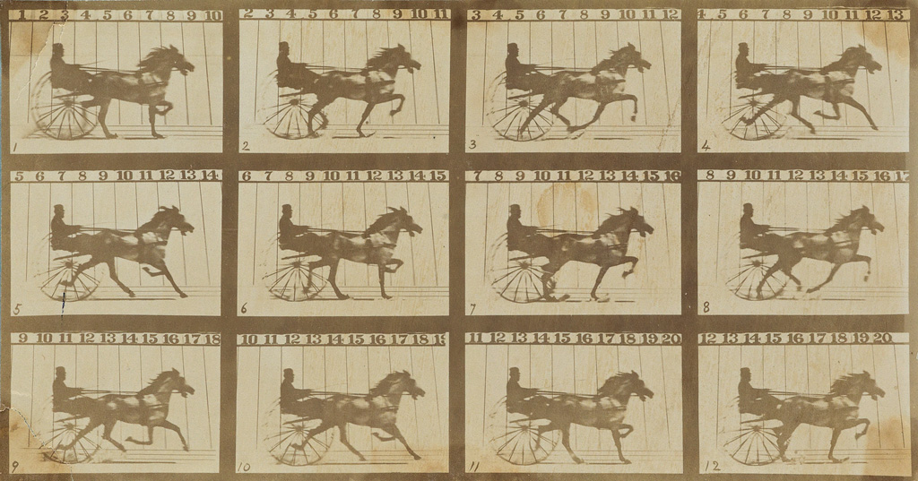 EADWEARD MUYBRIDGE (1830-1904) The Horse in Motion (composite).
