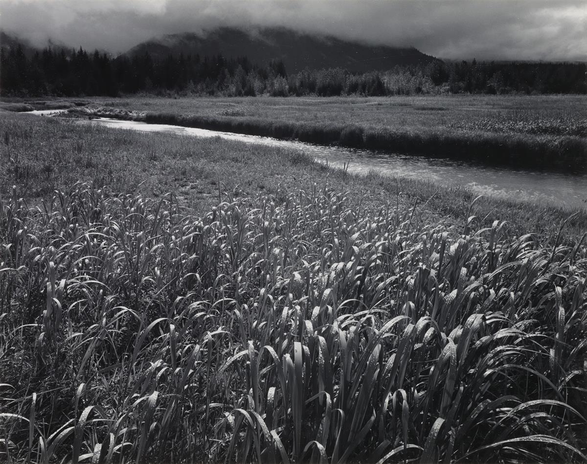 ANSEL ADAMS (1902-1984) Rain, Beartrack Cove, Glacier Bay National Park, Alaska.