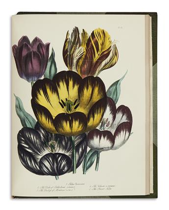 (BOTANICAL.) Loudon, Jane Wells. The Ladies Flower Garden; [and] British Wild Flowers.