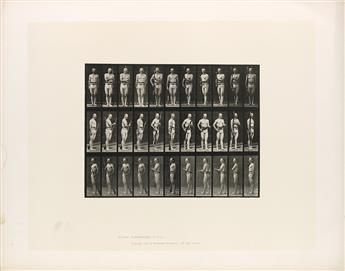 EADWEARD-MUYBRIDGE-(1830-1904)-A-selection-of-7-plates-from-