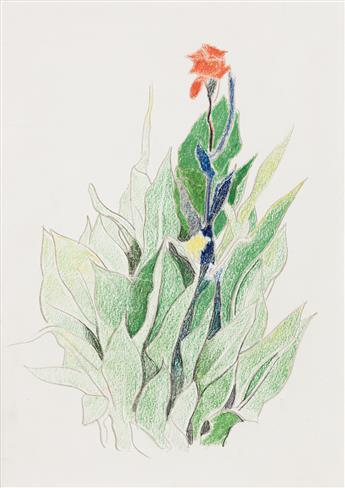 JOSEPH STELLA (1877 - 1946, AMERICAN) Red Canna Among Green Leaves.