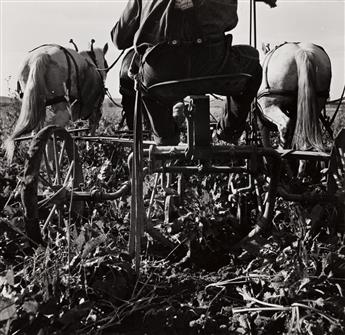 DOROTHEA LANGE (1895-1965) Sugar beet lifter in older settler's field, which loosens beets and partially lifts them from ground. Near