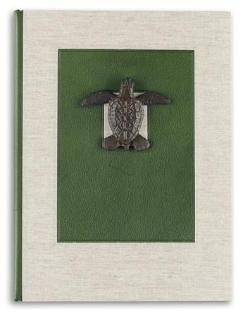 (CHELONIIDAE PRESS.) Robinson, Alan James. Cheloniidae: Sea Turtles.