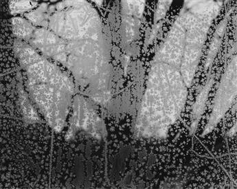 PAUL-CAPONIGRO-(1932--)-Portfolio-One