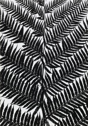 GEORGE A. TICE (1938- ) Trees Portfolio, 1964-65.