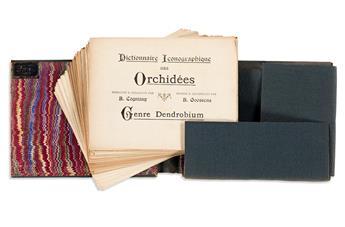 (ORCHIDS.) Cogniaux, Alfred; and Alphonse Goossens. Dictionnaire Iconographique des Orchidées.