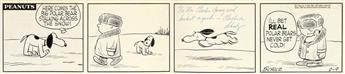 (CARTOONS / CHARLIE BROWN / SNOOPY / PEANUTS.) CHARLES M. SCHULZ. Here comes the big Polar Bear stalking across the snow!