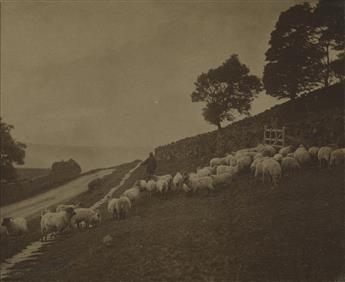 FRANK-MEADOW-SUTCLIFFE-(1853-1941)-Among-the-Turnips--Glaisd