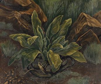 KATHERINE SHUBERT-KUNIYOSHI SCHMIDT (1899-1978) Snake in the Grass.