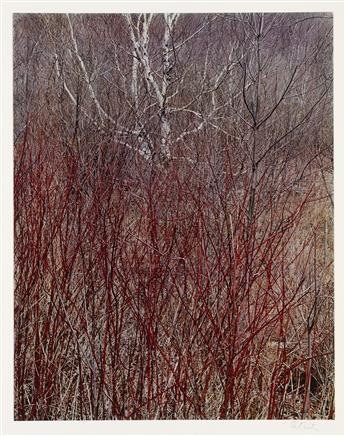 ELIOT PORTER (1901-1990) Portfolio entitled In Wildness.