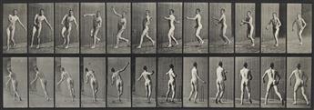 EADWEARD MUYBRIDGE (1830-1904) A selection of 60 plates from Animal Locomotion.