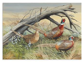 SINGER, ARTHUR. Pheasants in Grass.