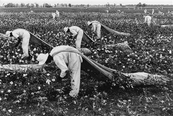 DANNY LYON (1942- ) Cotton Pickers, Ferguson Unit, Texas from Conversations with the Dead.