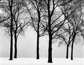 HARRY CALLAHAN (1912-1999) Chicago (trees in snow).