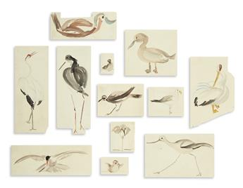(BIRDS.) Group of approximately 12 stylized ornithological watercolors.
